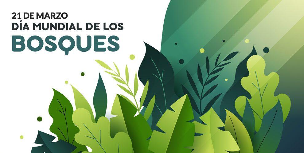 Día Mundial de los Bosques | 21 de Marzo