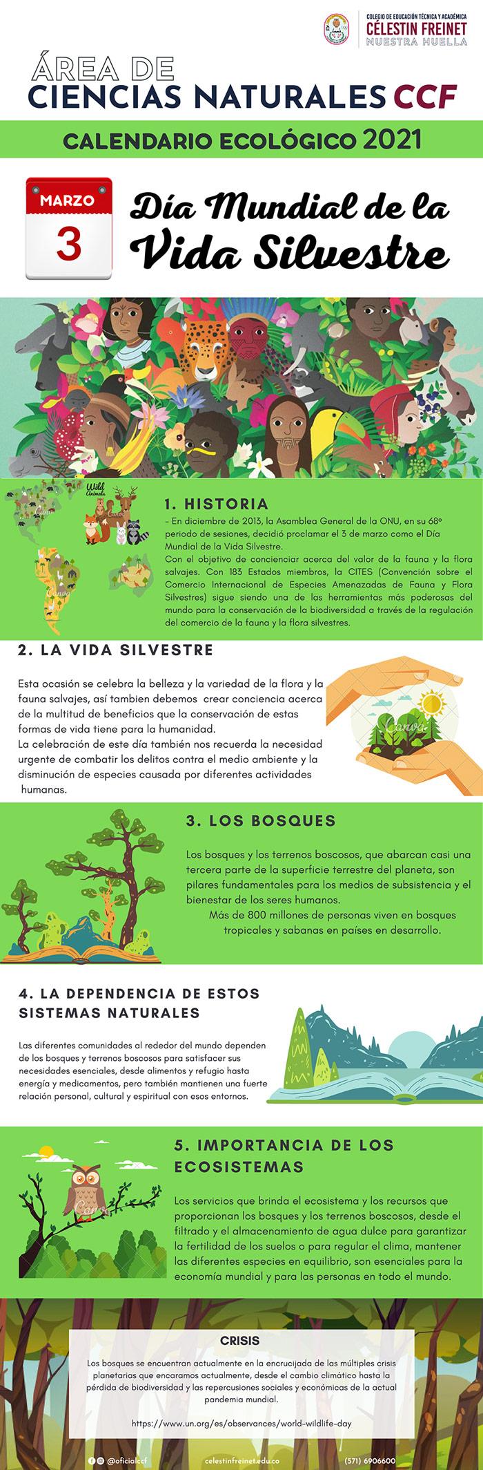 Día Mundial de la Vida Silvestre   Infografía
